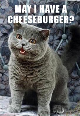 May_I_have_a_cheeseburger